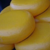 La Holanda del típico tópico: quesos, molinos, tulipanes y canales