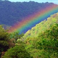 Dominica, la isla natural.