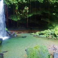 Emerald Pool en Dominica